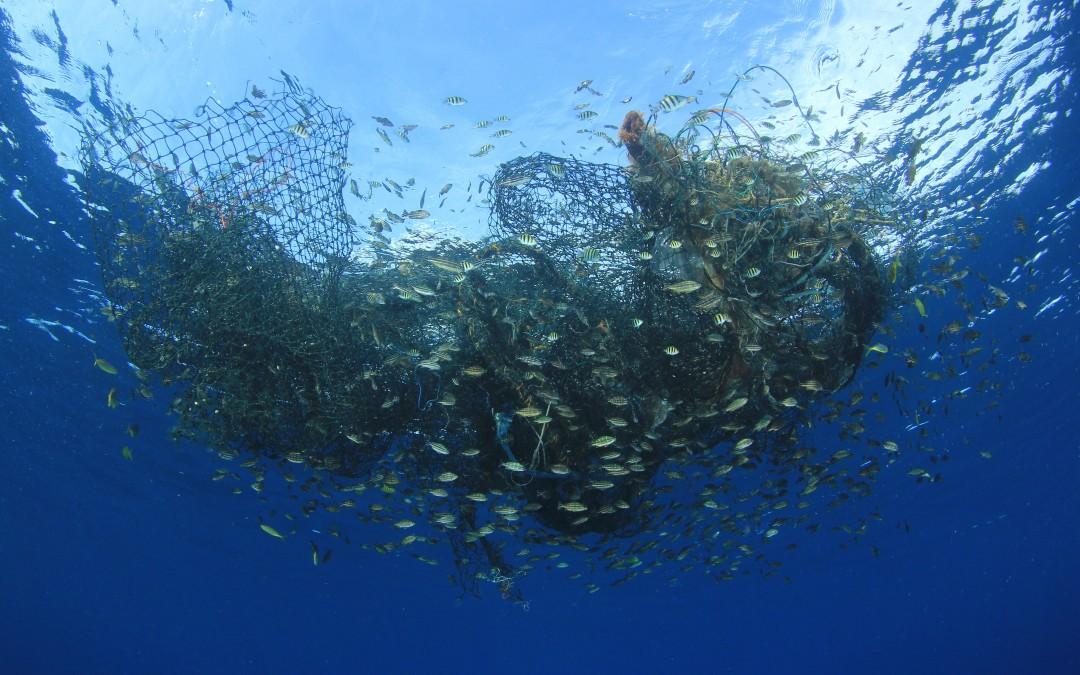 Los peligros de la pesca ilegal